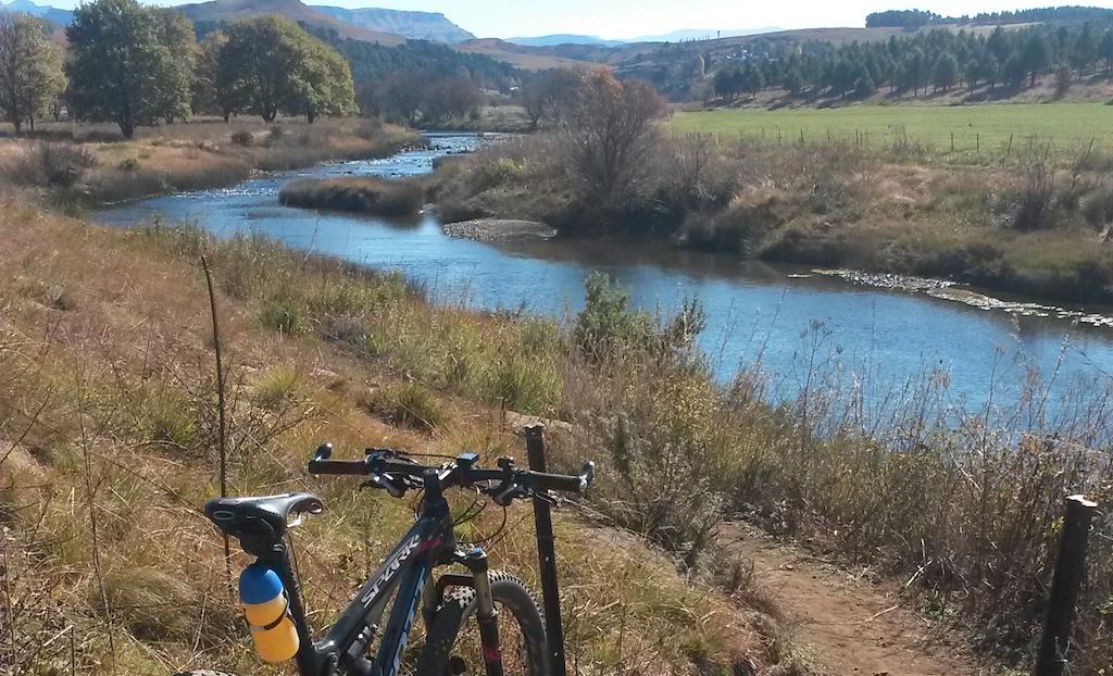 Trails – Riverlea – Bottom Loop trail bridge